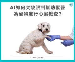 臨床獸醫師的心臟快速檢查 內科獸醫何宜儒的專訪