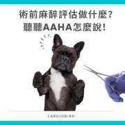 術前麻醉評估做什麼?聽聽AAHA怎麼說! 2020年AAHA狗貓麻醉和監測指南來了!