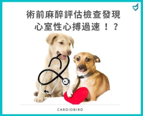 [案例分享] 術前麻醉評估檢查發現心室性心搏過速 (Ventricular tachycardia)!?