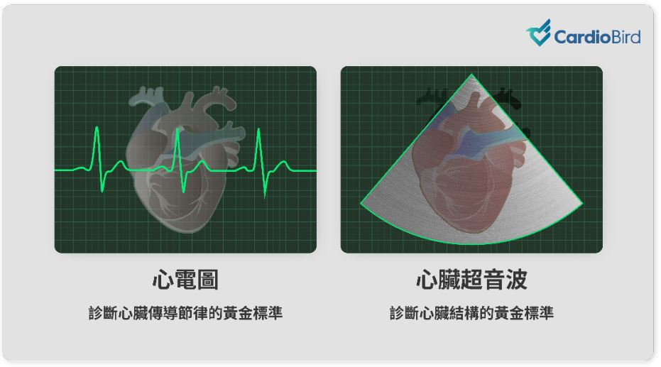 寵物心電圖vs寵物心臟超音波