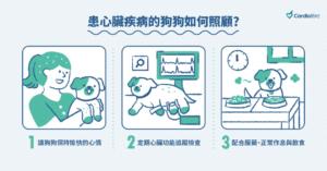 照顧心臟病犬的3方法