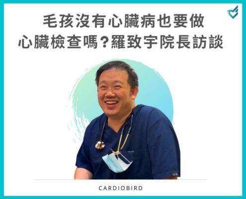 寵物沒有心臟病也要進行心臟檢查嗎?羅致宇醫師訪問