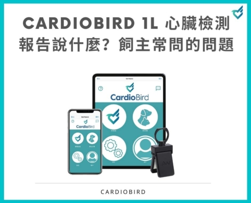 CardioBird 1L 心臟檢測 報告說什麼?飼主常問的問題