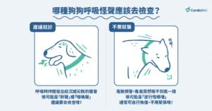 狗狗呼吸有聲音應該去檢查?